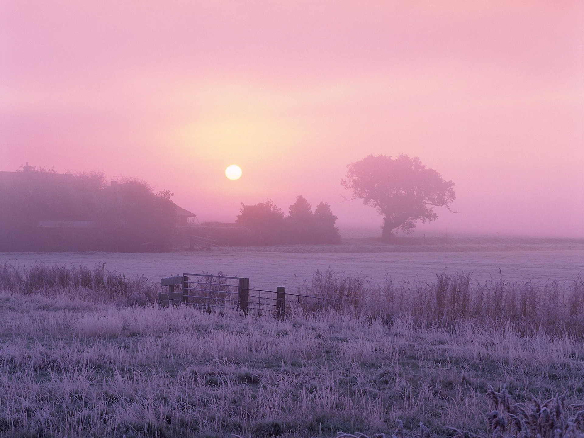 Sunrise over frosty farmland