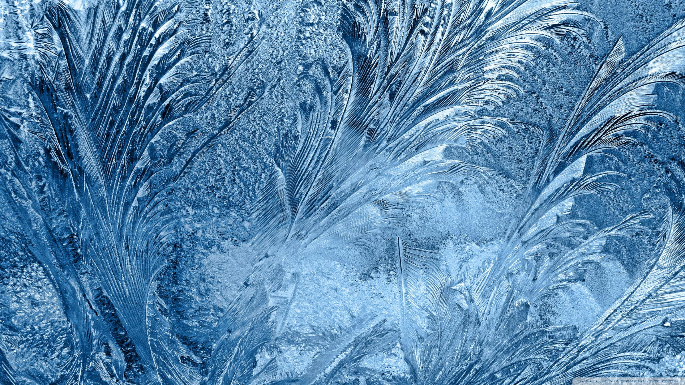 Frozen Glass Wallpaper