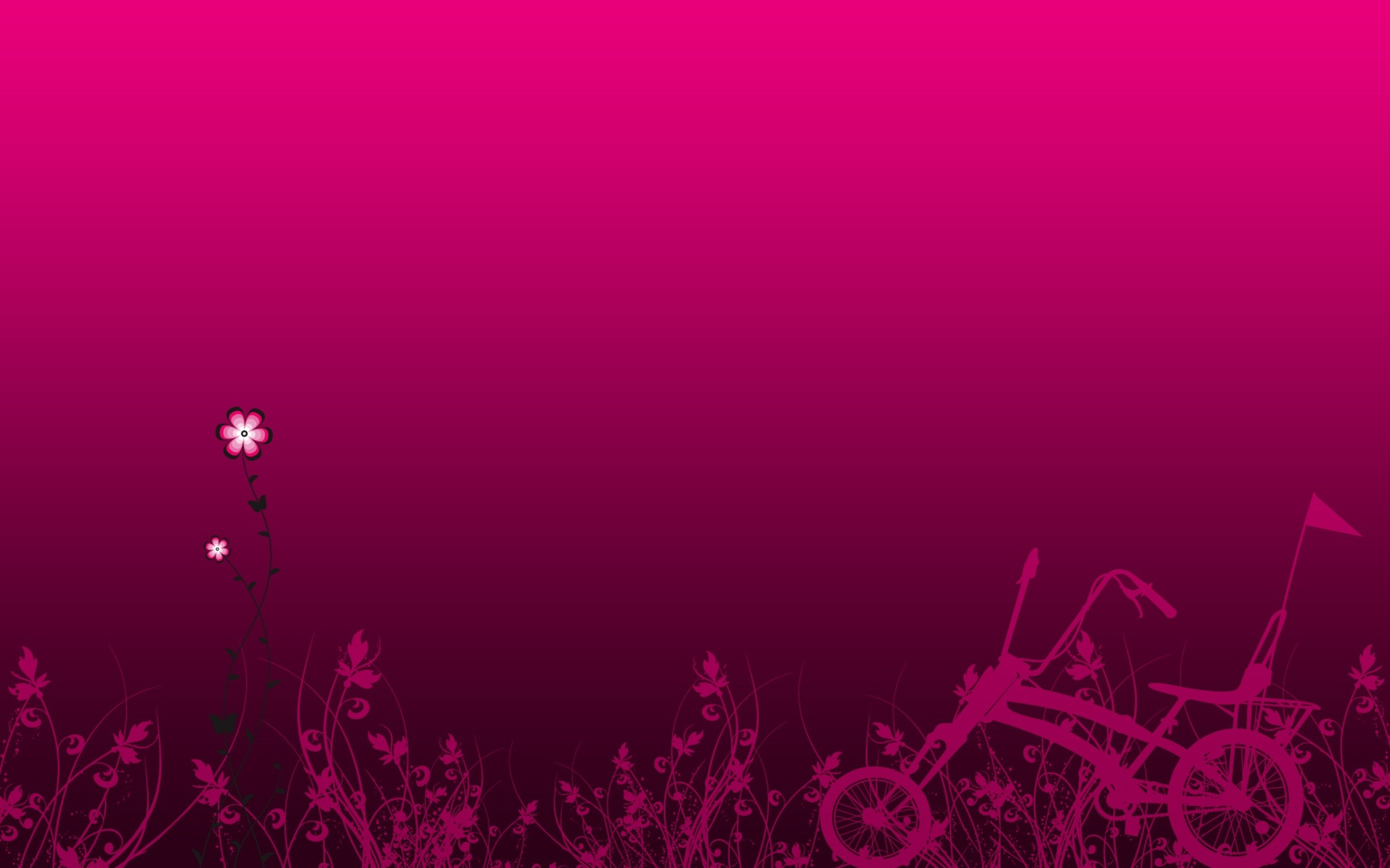 Fuchsia Wallpaper
