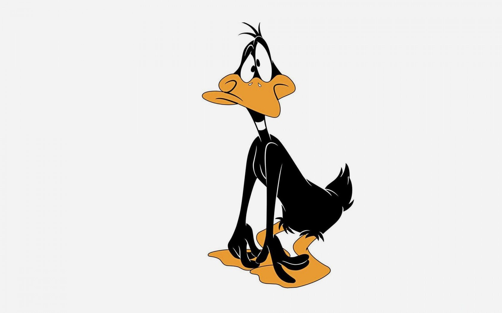 Funny Cartoon Daffy Duck