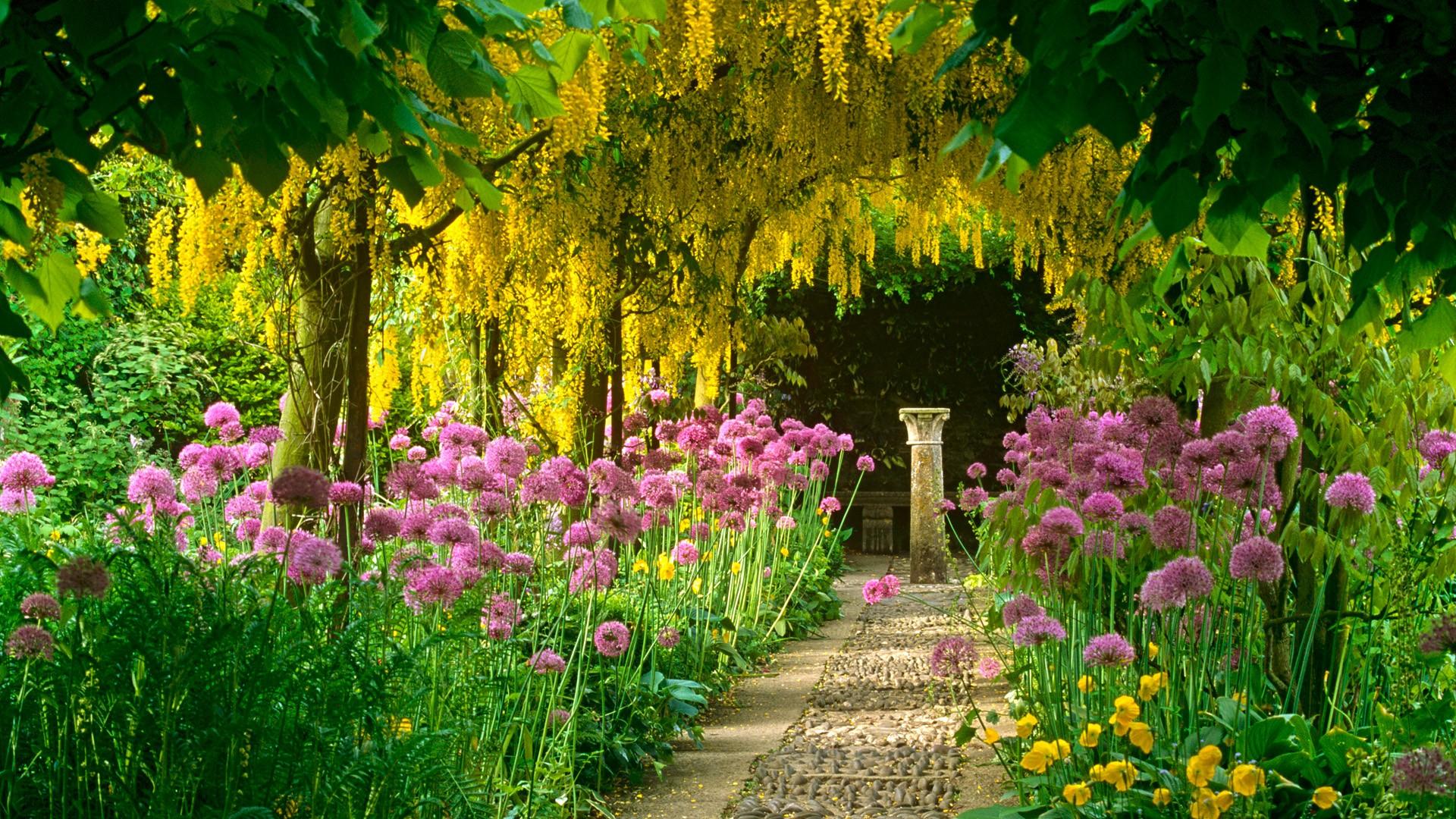 Garden Wallpaper