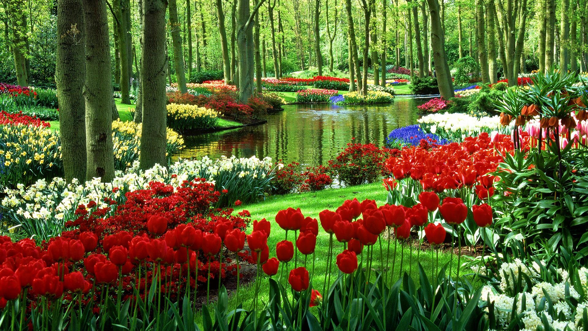 Related Wallpapers: Garden