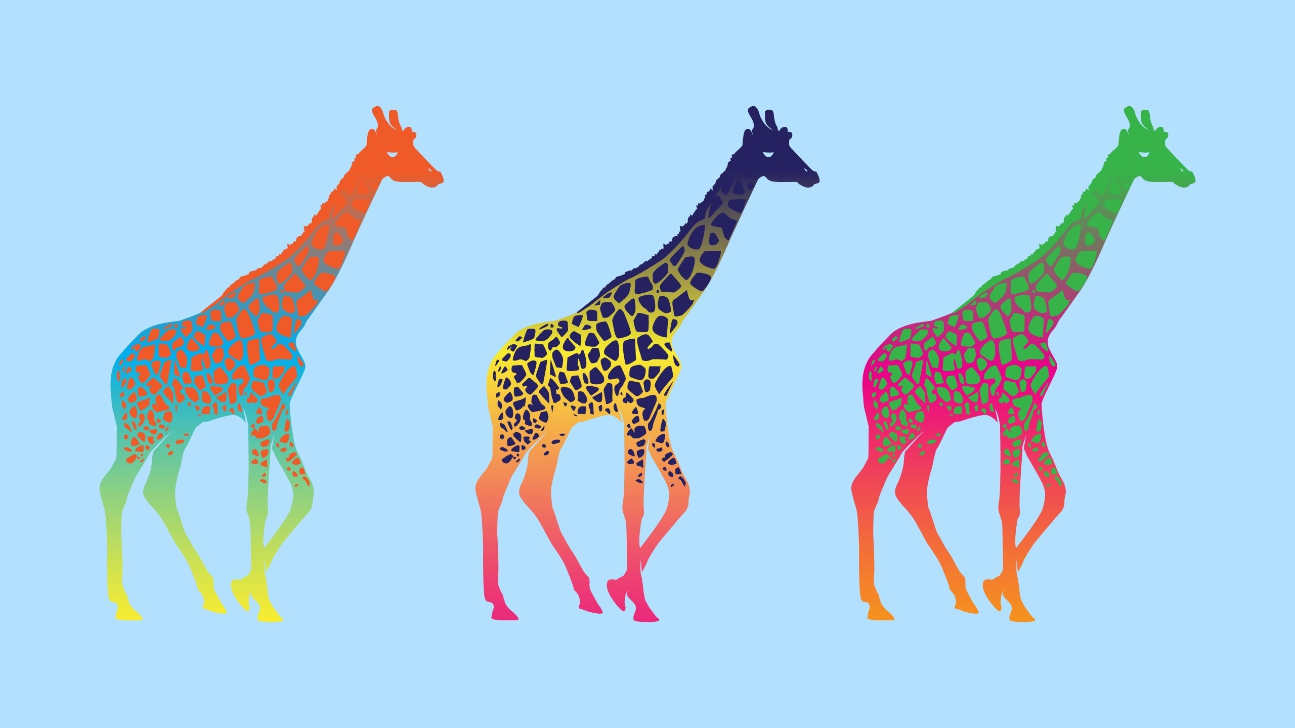 Animals for Gt Animated Giraffe Wallpaper 2560x1440px