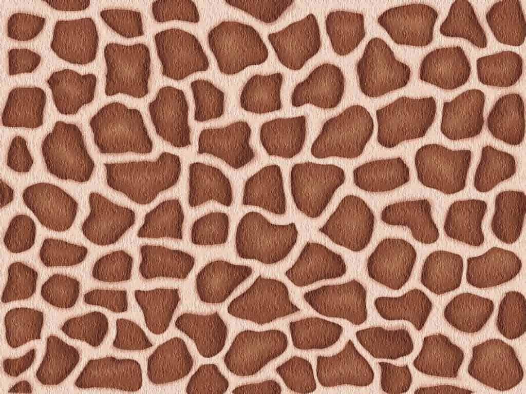 photo giraffe-skin-pattern-texture.jpg
