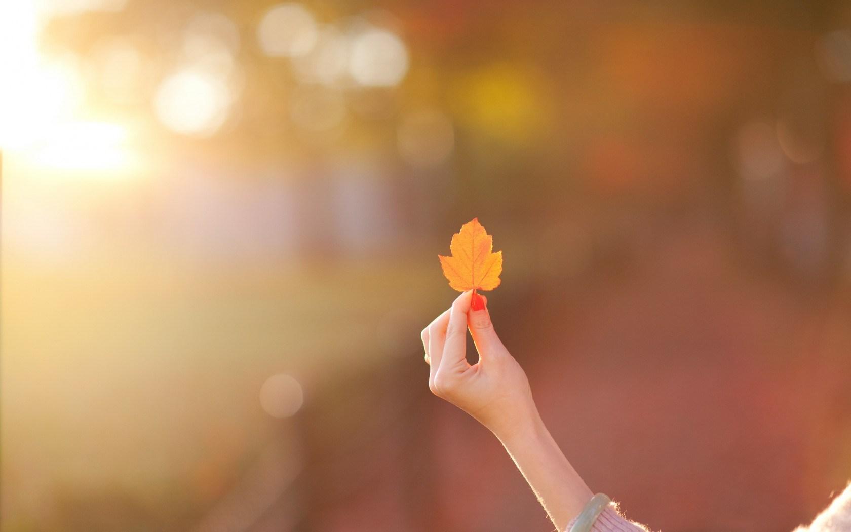 Girl Hand Leaf Mood Autumn