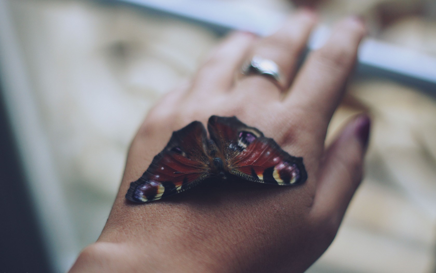 Girl Hand Ring Butterfly