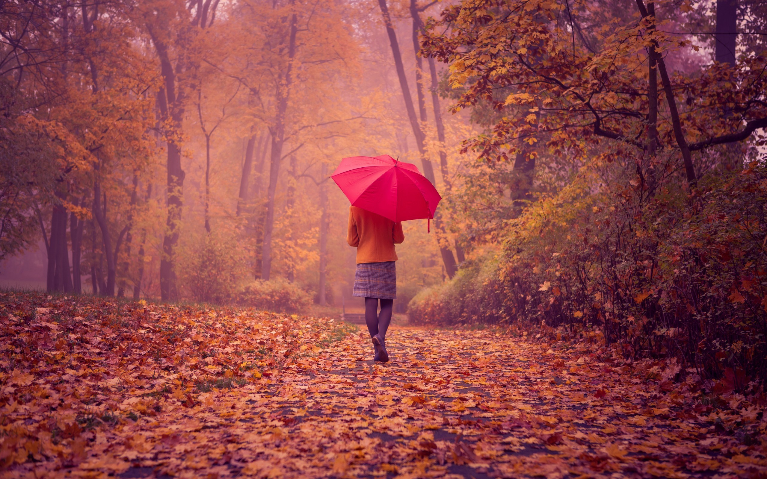 Girl Red Umbrella Fall Road Nature