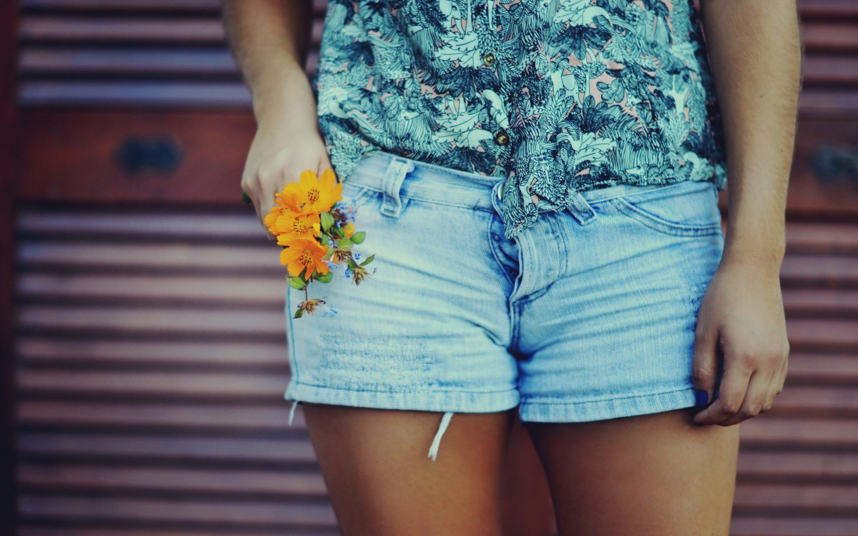 Girl Shorts Photo