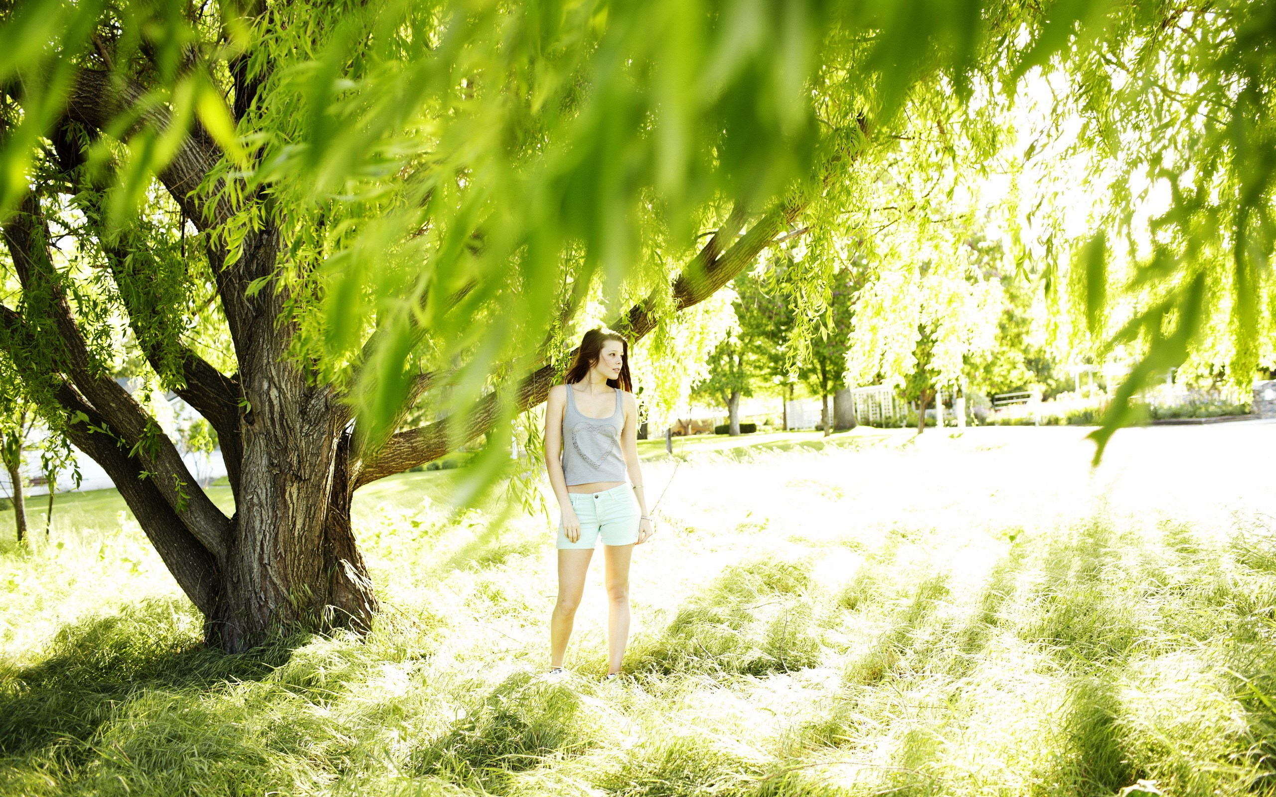Girl Summer Tree Nature