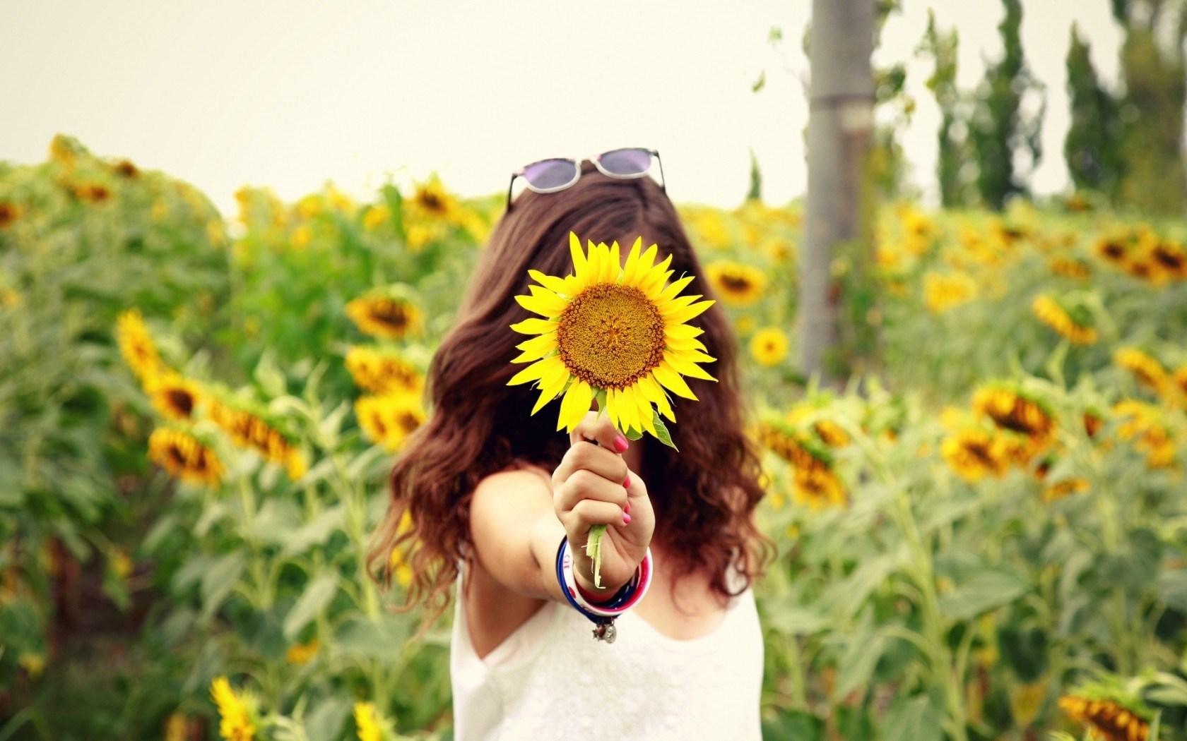 Mood Girl Field Sunflowers