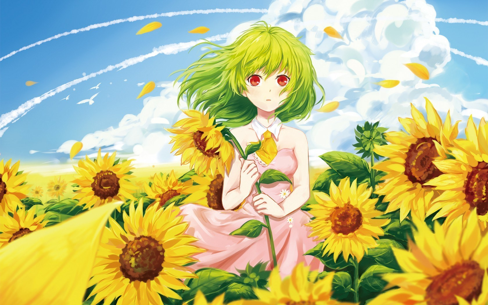 Girl Sunflowers Summer Anime