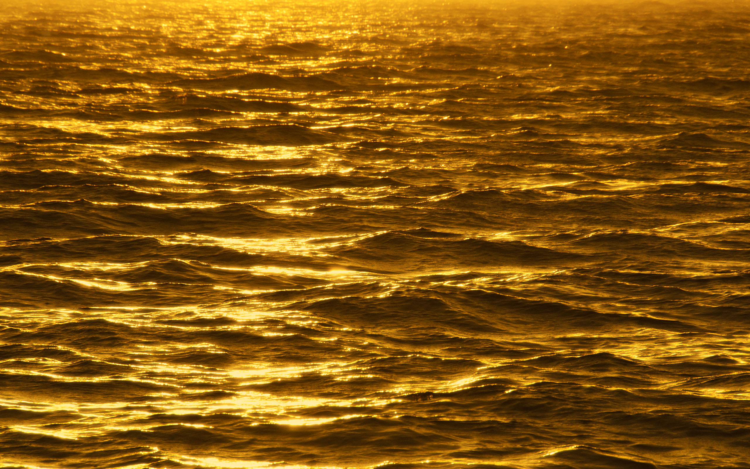 ... Gold wallpaper 10 ...