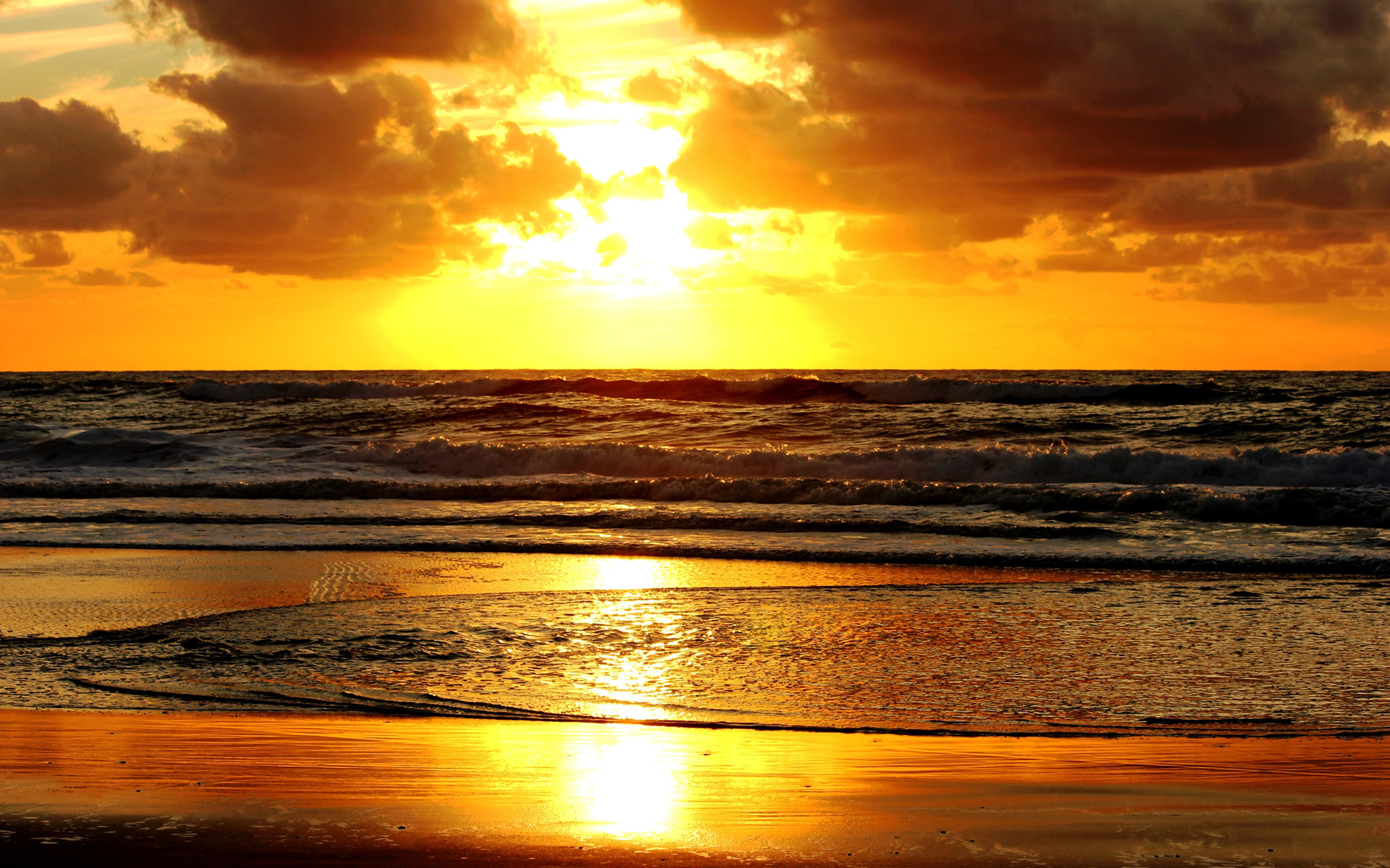 Golden sunset hd
