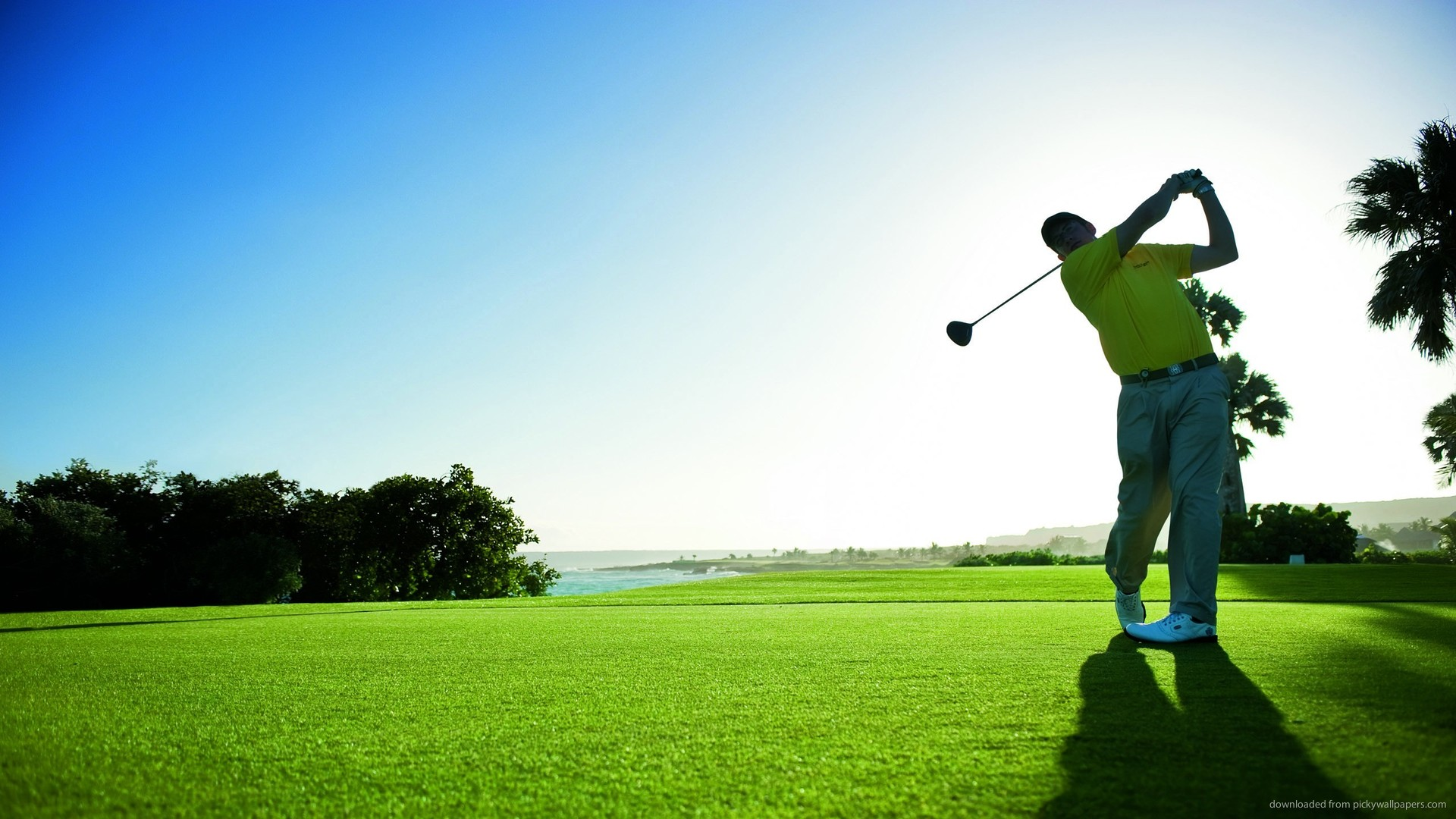 Download Man Hits The Golf Ball Wallpaper