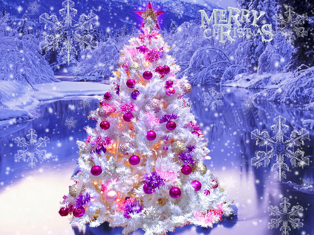 Gorgeous Snow Trees Wallpaper 1024x768 27175