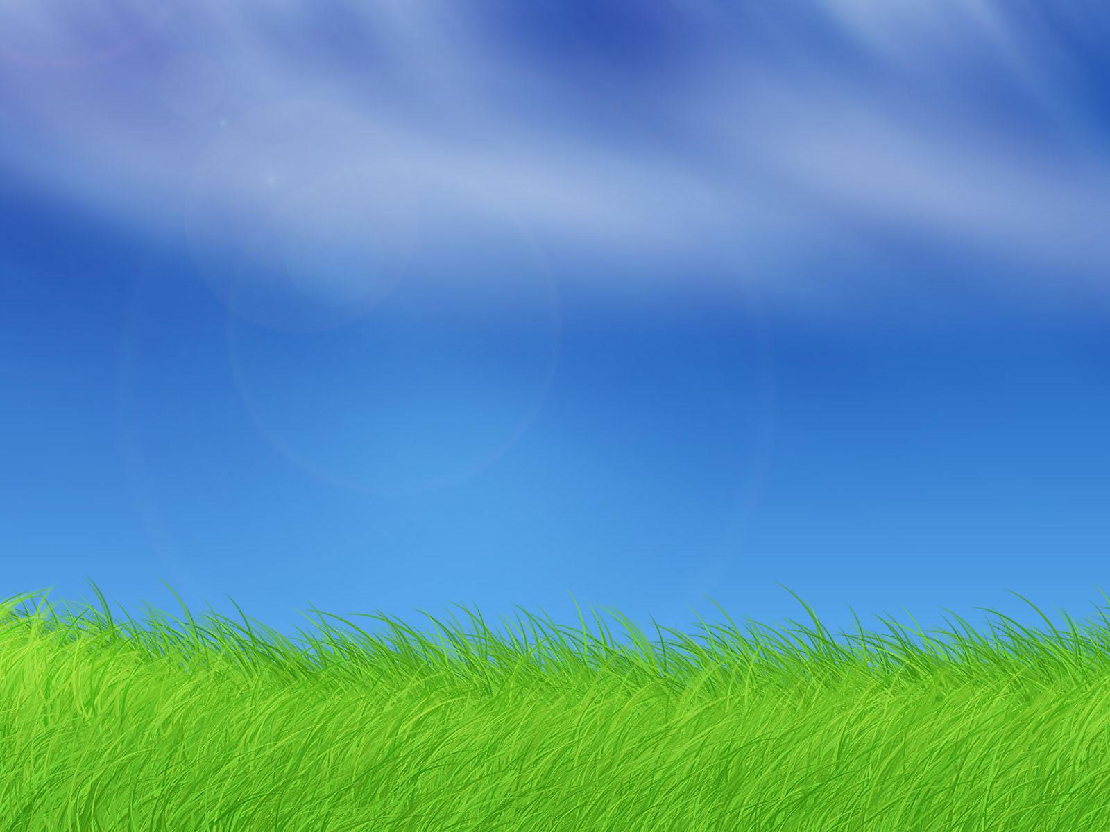Grass Background 18860 1920x1200 px