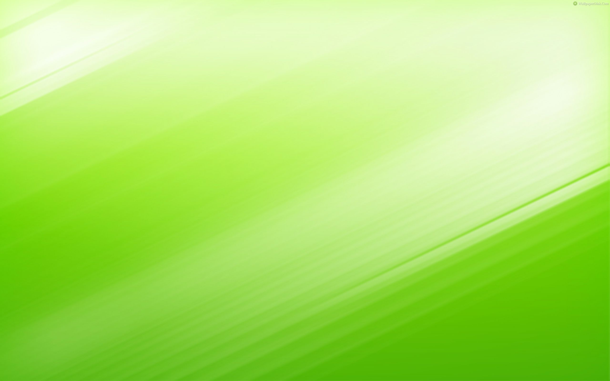 Green Background Wallpaper 2560x1600 57495