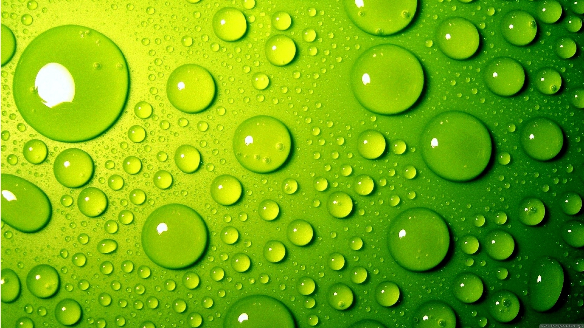 Green waves and bubbles wallpaper Abstract wallpapers