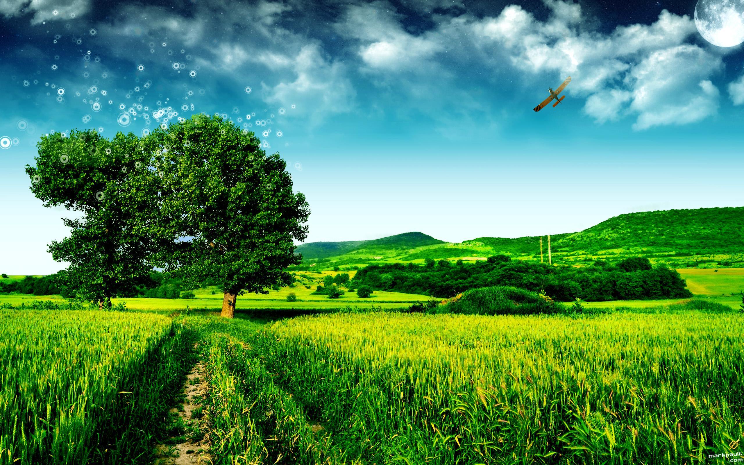Green Fields Landscape