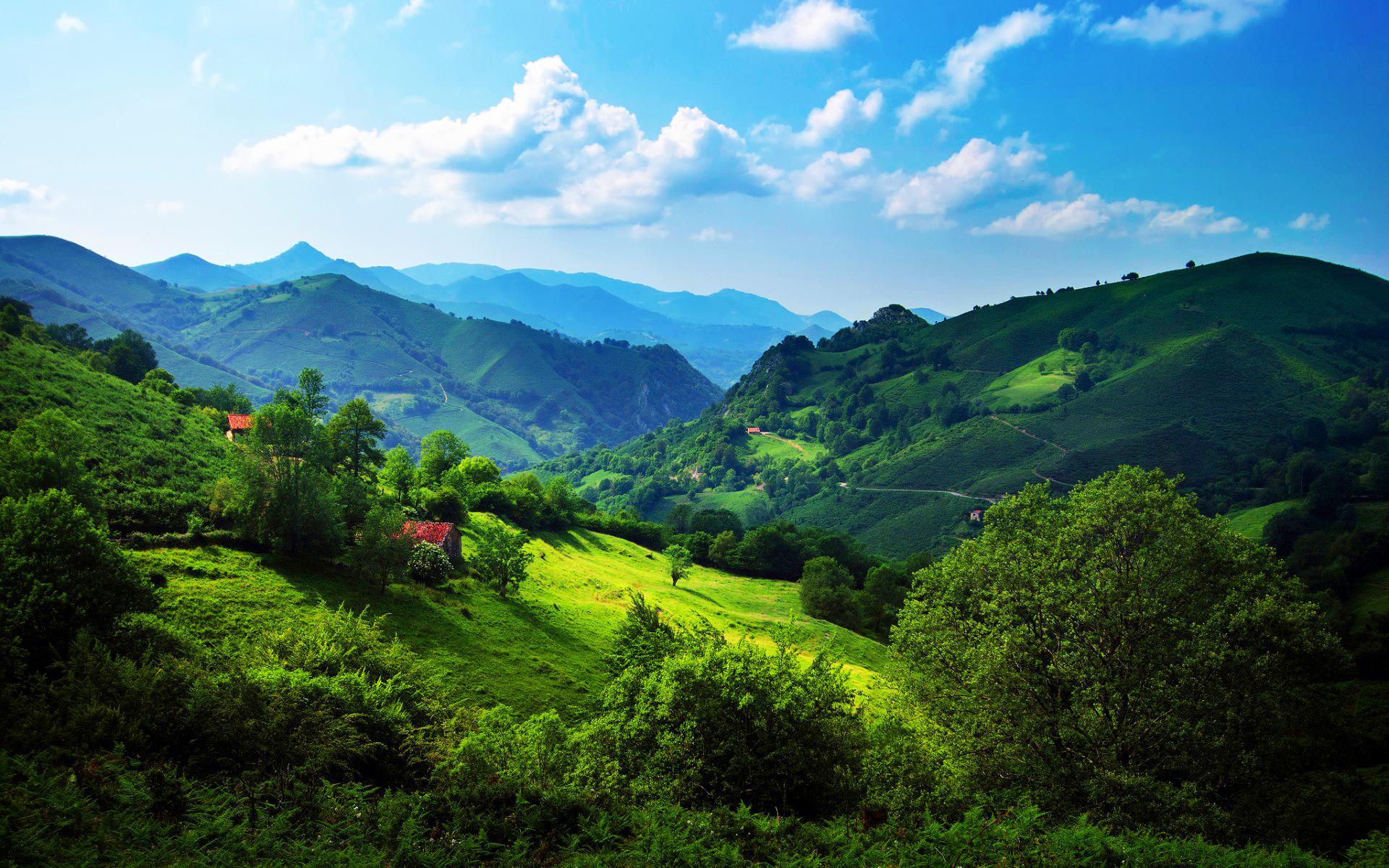 Green hills 1