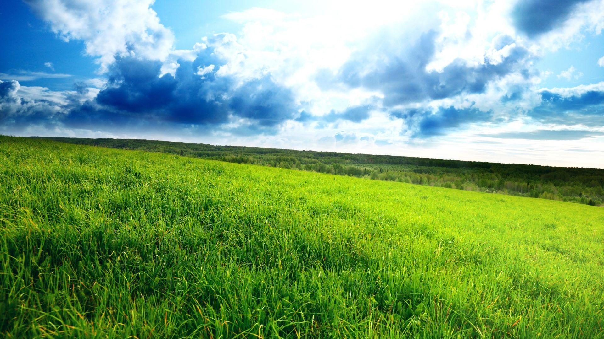 Natural Landscape Photography Wallpaper