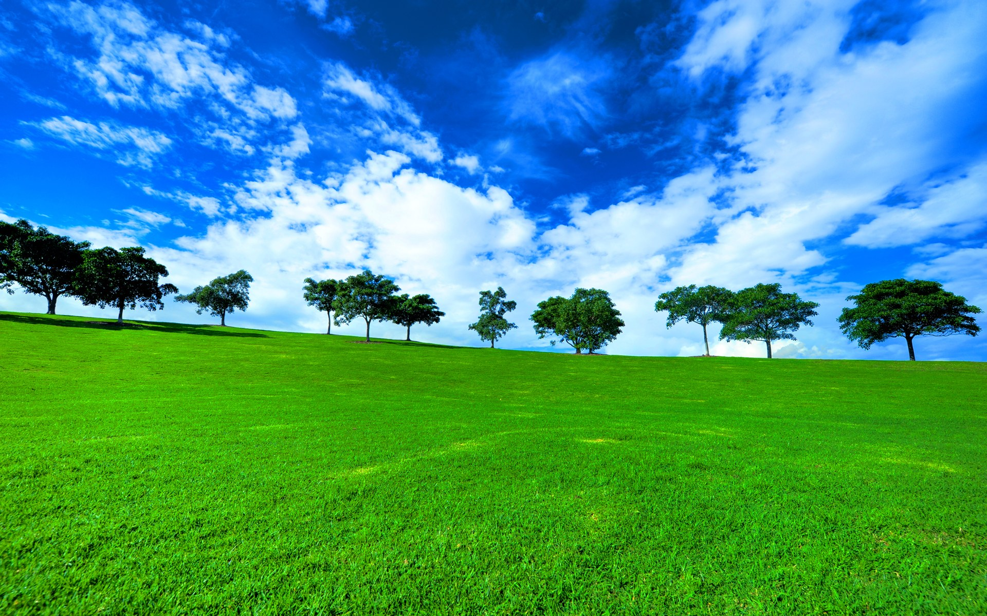 Green Landscape Wallpaper 1920x1200 53372