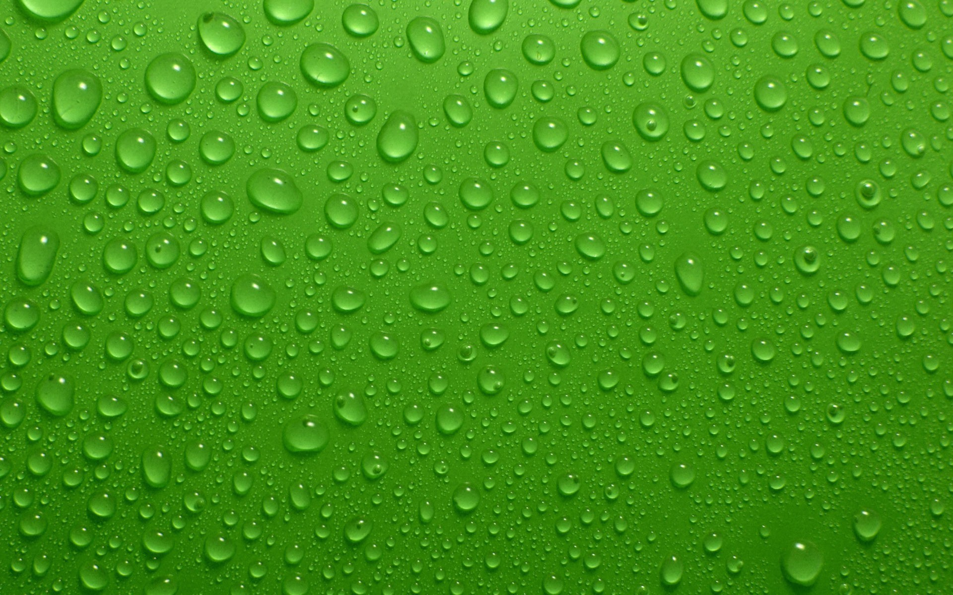 Green Bubbles wallpaper x