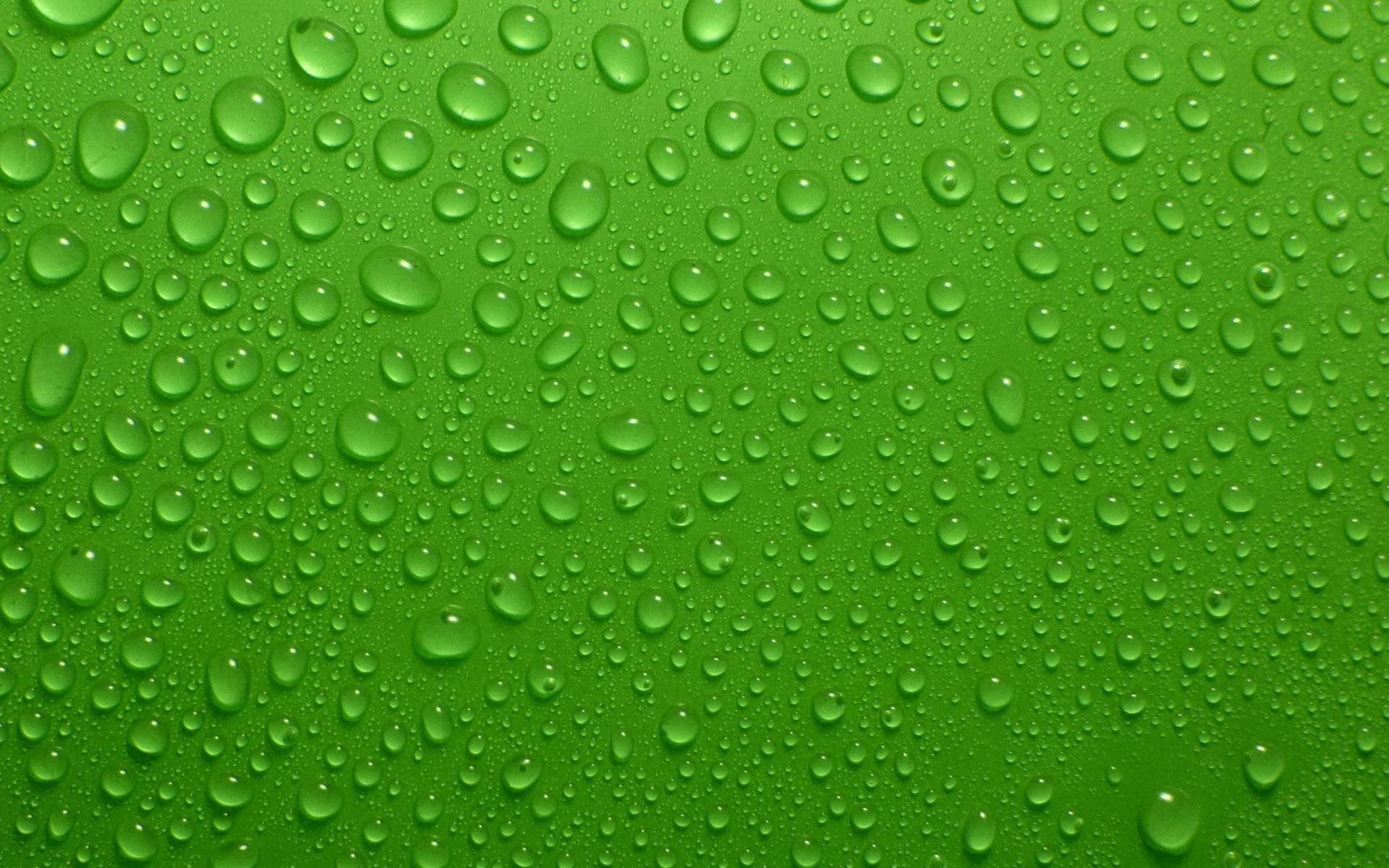... Green Wallpaper ...