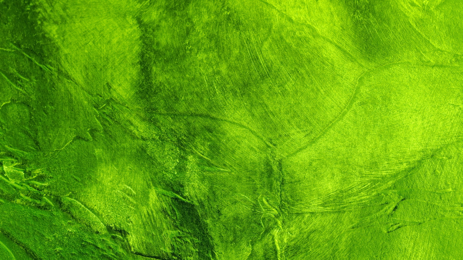 Green Wallpaper 354 Widescreen Nature
