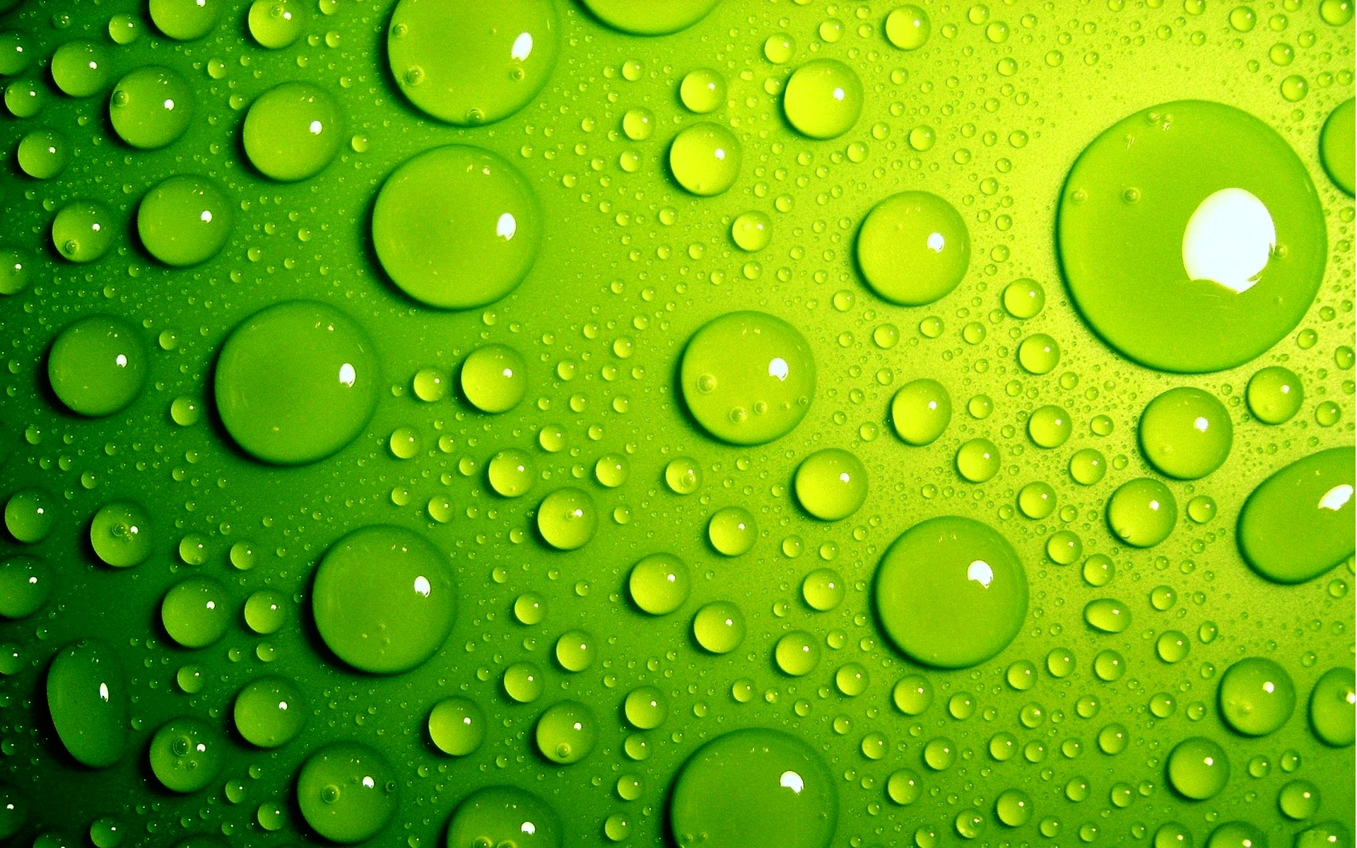 ... Green Wallpaper 11 ...