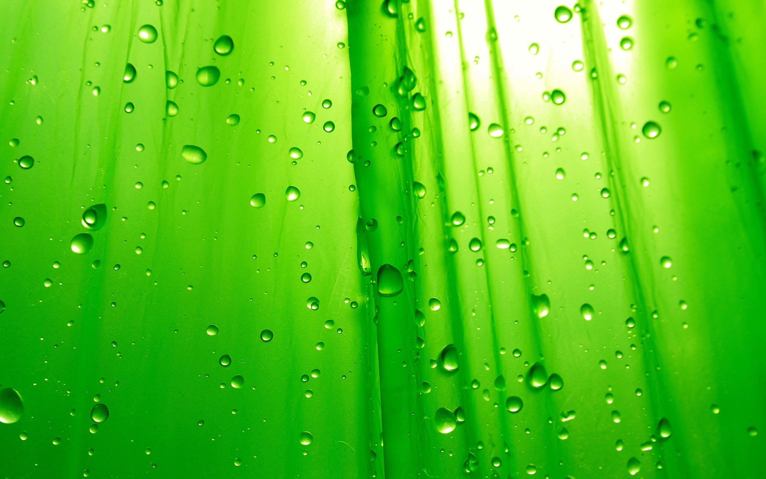Green Wallpaper; Green Wallpaper ...