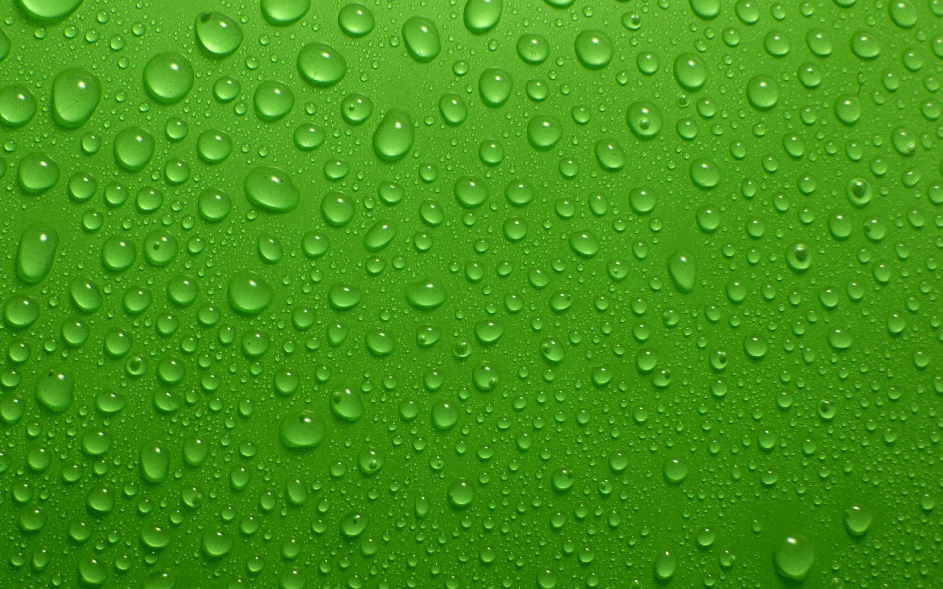Green water drops HQ Wallpaper