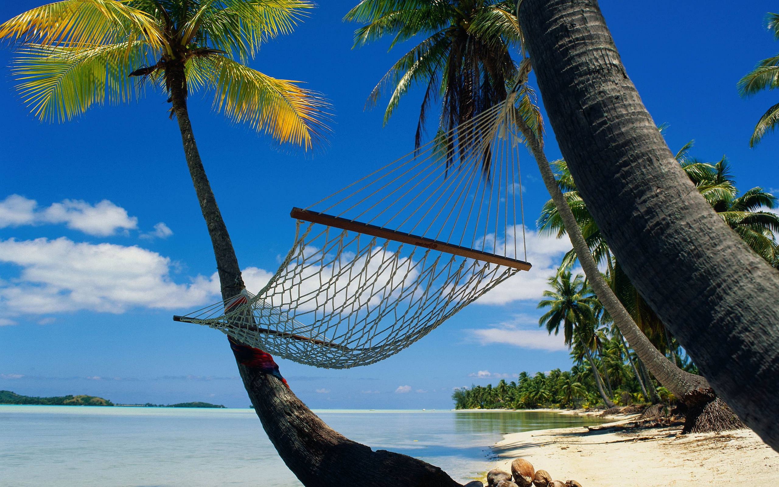 Hawaiian Hammock Wallpaper