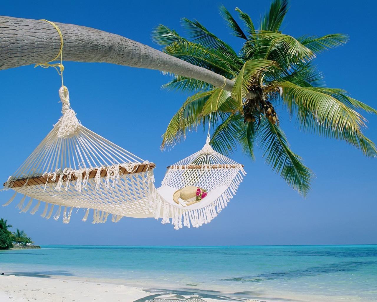 beach hammock 199847
