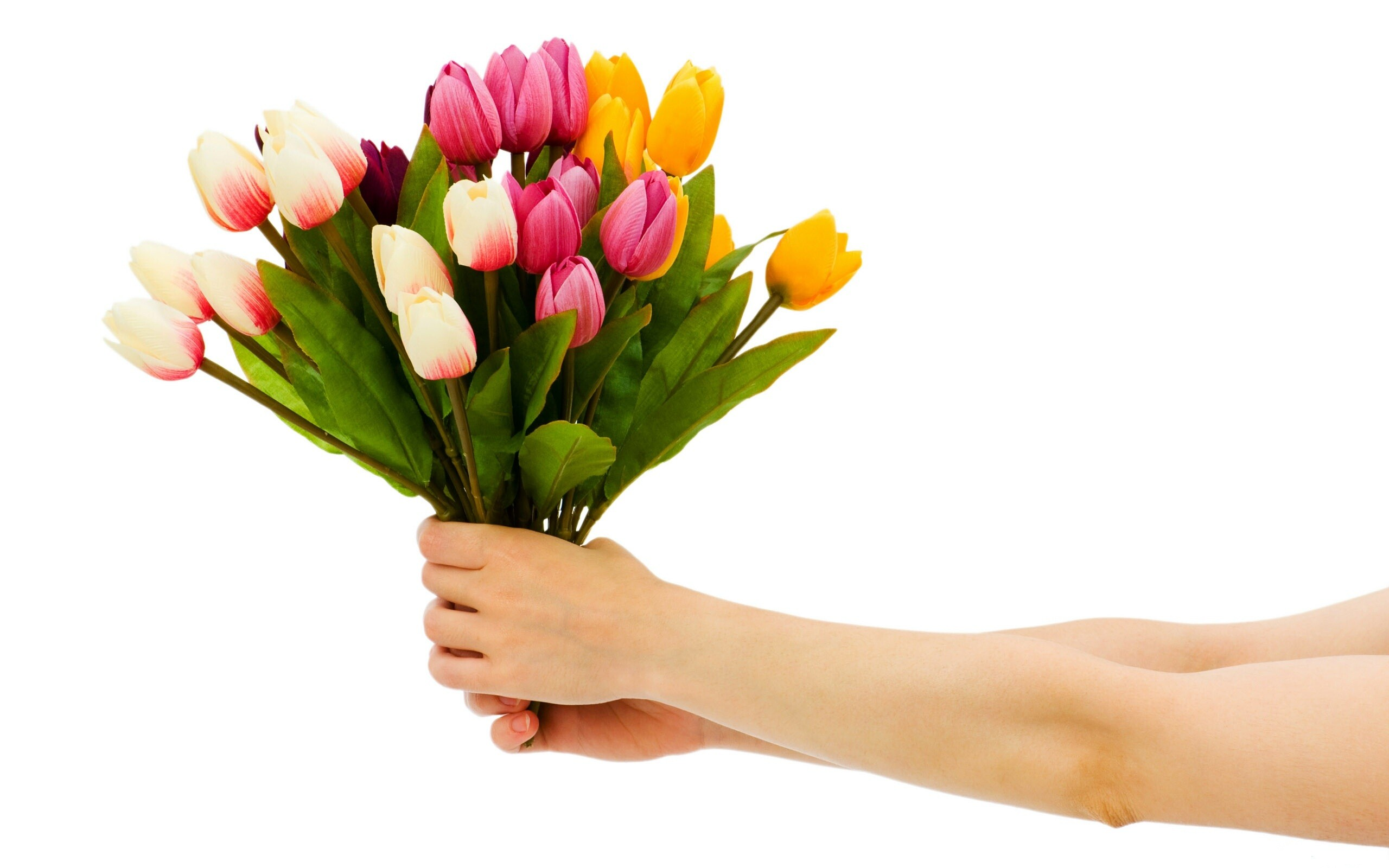 5564 Views 2380 Download Beautiful Buke Flowers in Hand HD Wallpapers