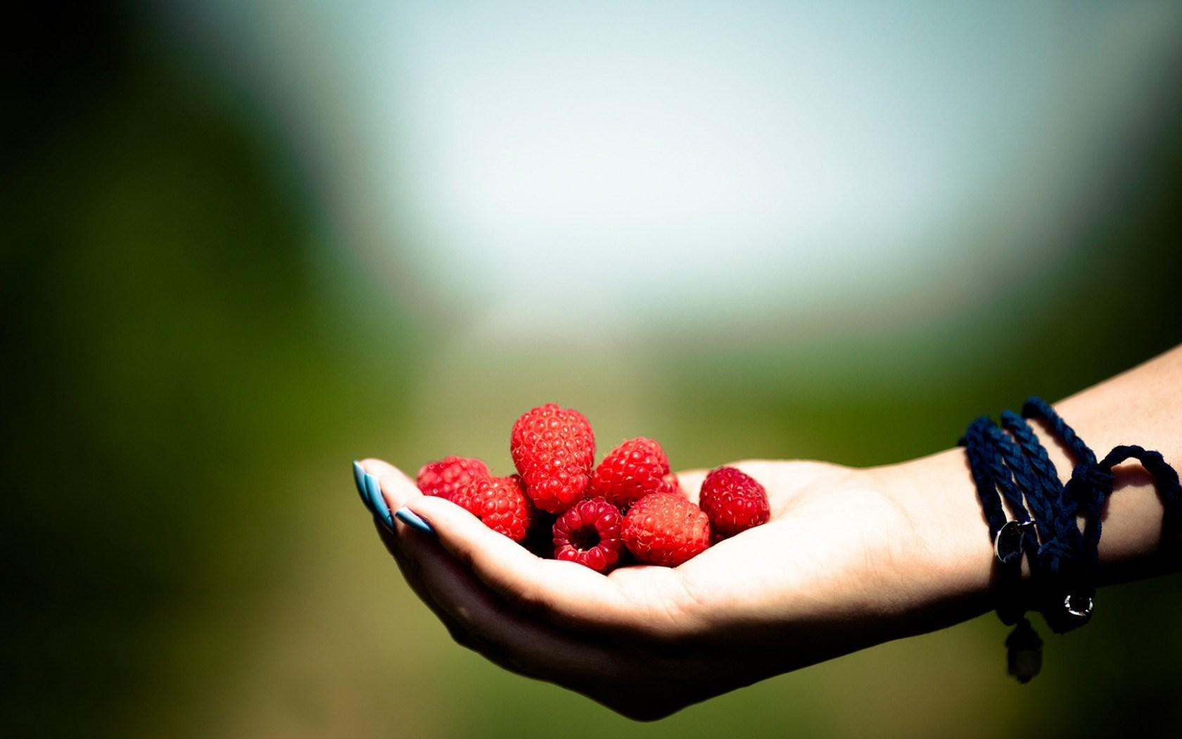 Hand Raspberries Berries Mood