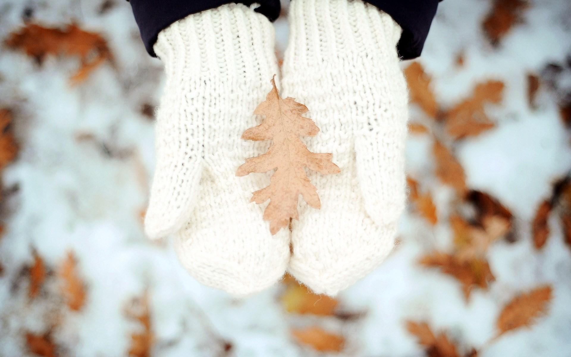 Hands Leaf Winter Snow Mood