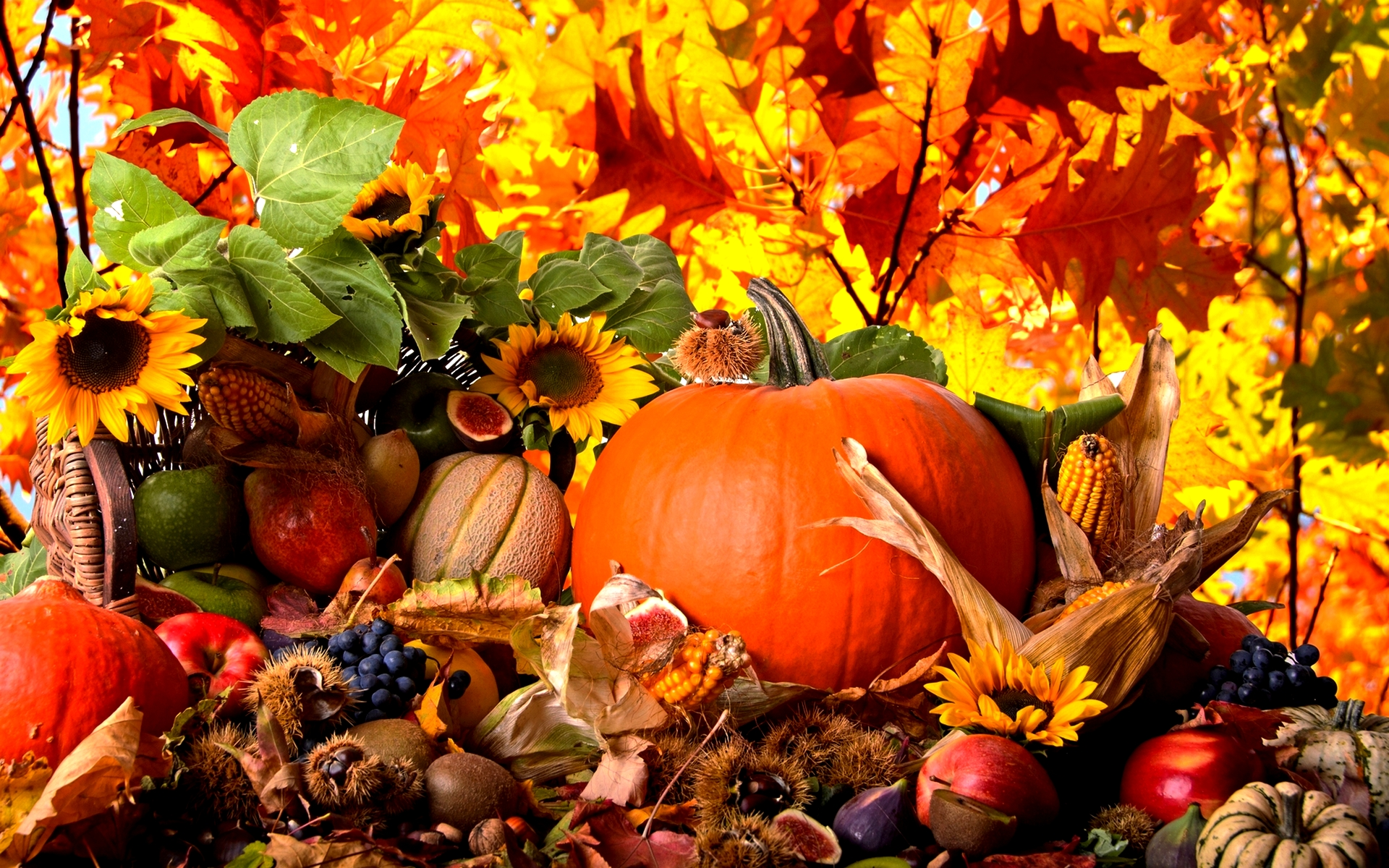 Autumn Harvest Abstract Wallpapers Hd Free 1920x1200px