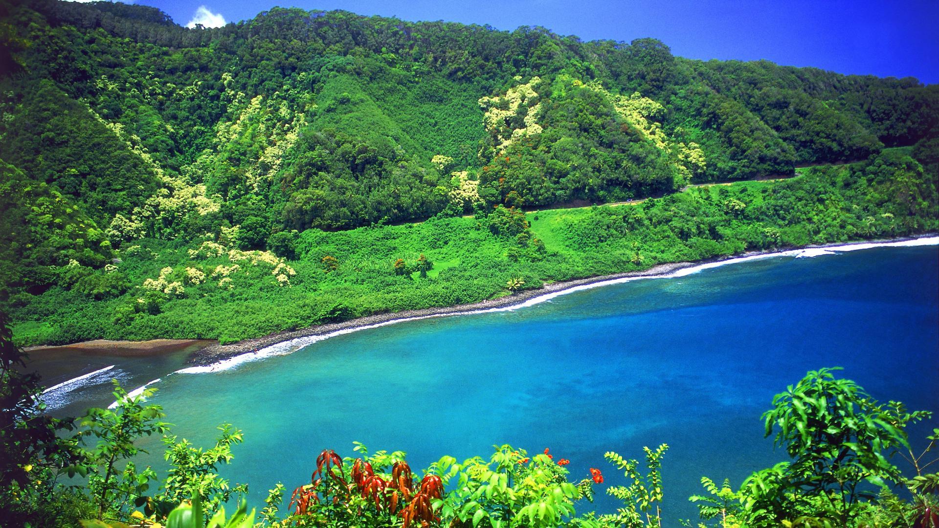 Hawaii #15