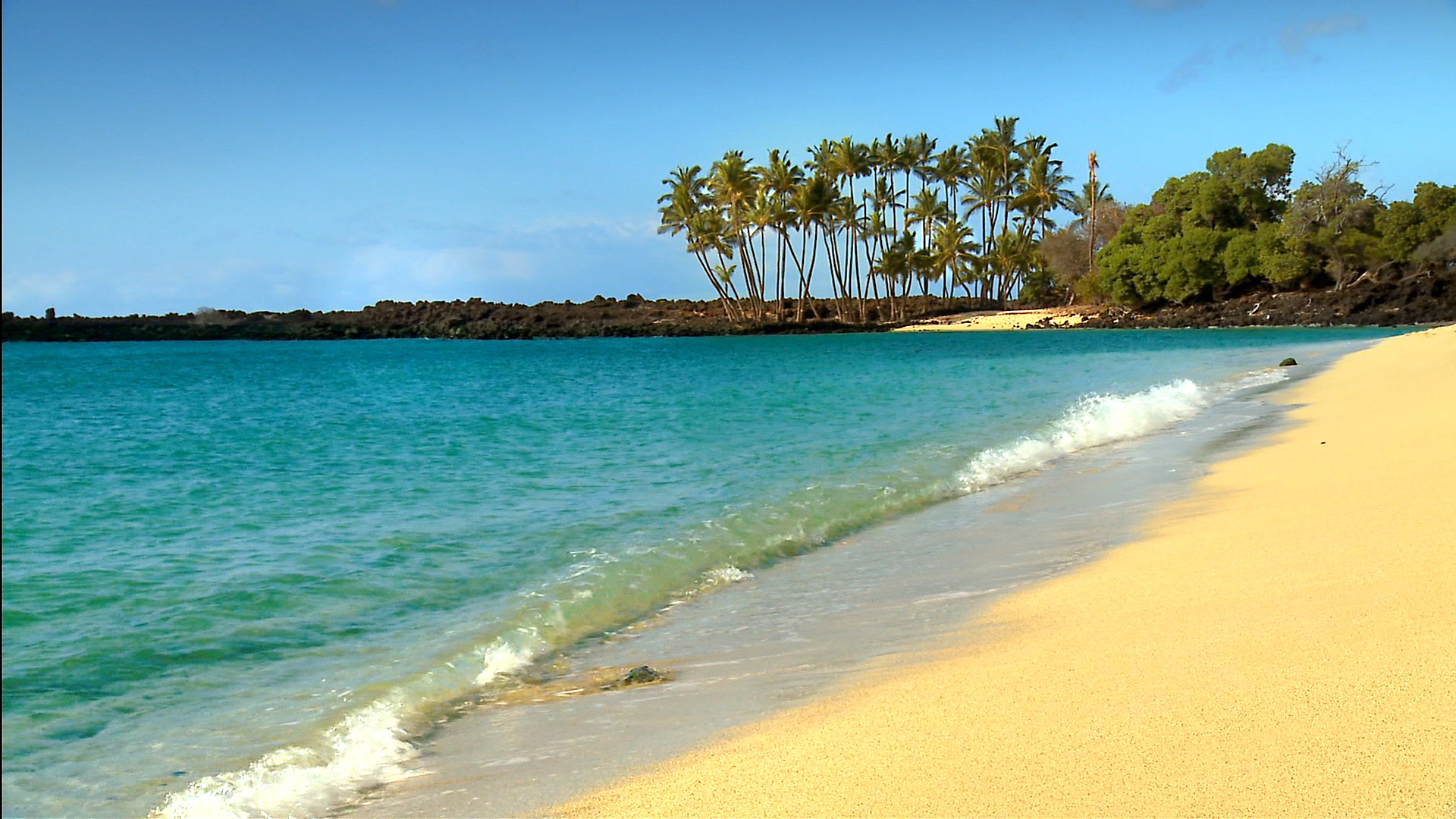 Hawaii Beach #7