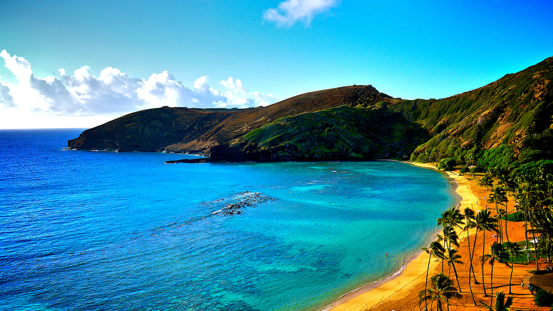 Hawaii Beach #8