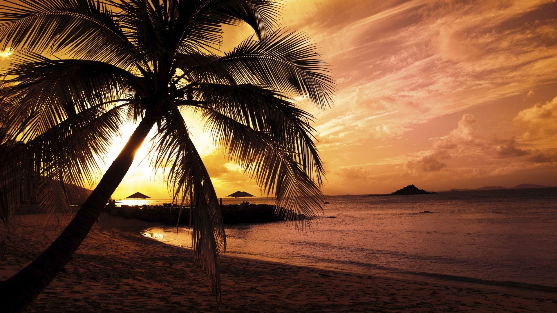 hawaii beach night #1