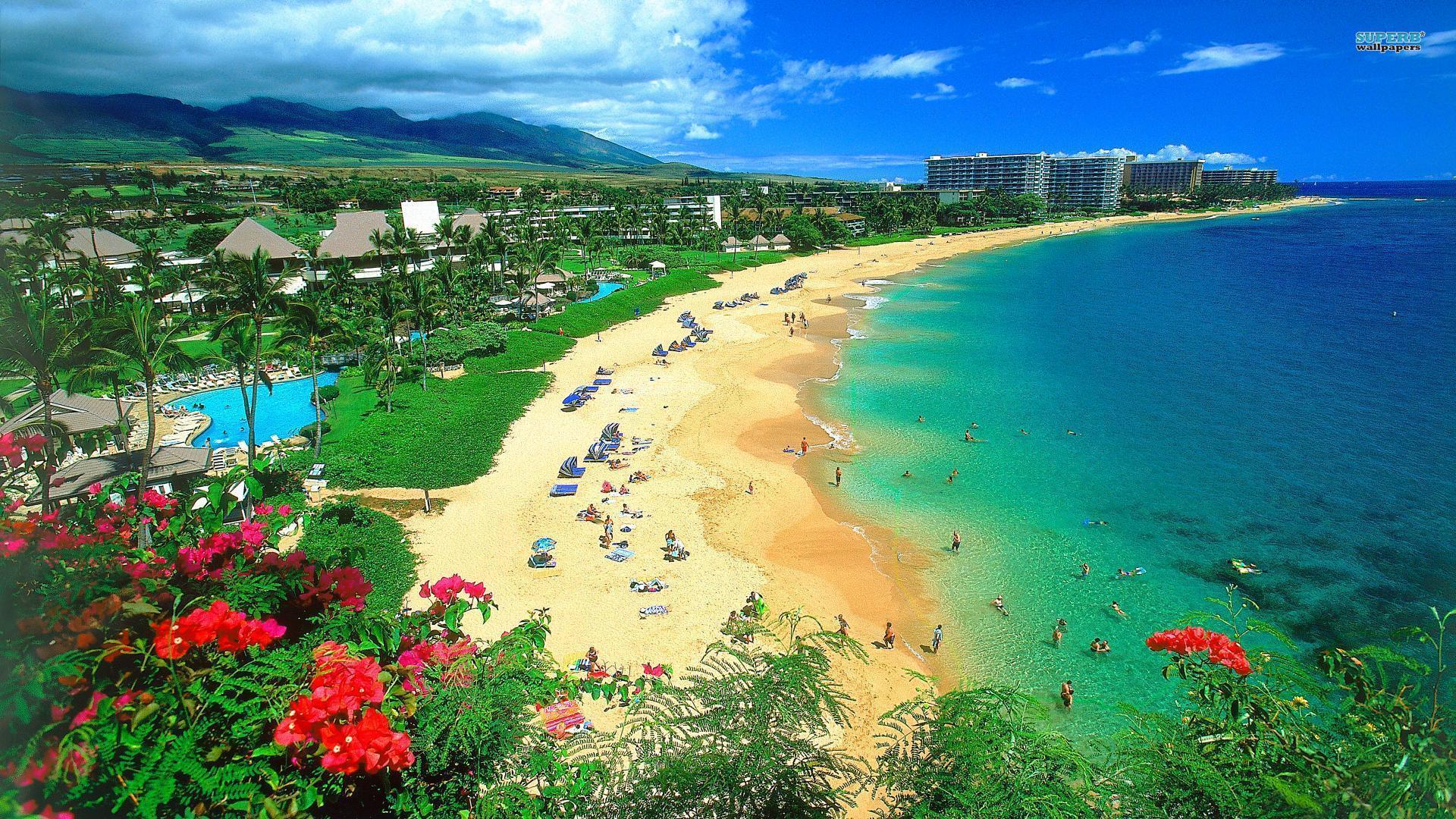 Hawaii Wallpaper #11