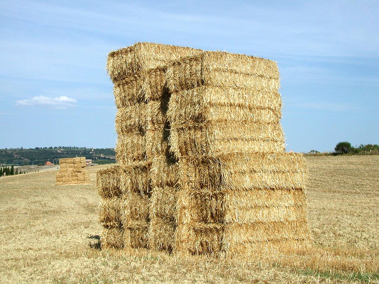 With winter approaching, most livestock producers have already purchased winter hay supplies, but did they purchase enough hay that meets the nutritional ...