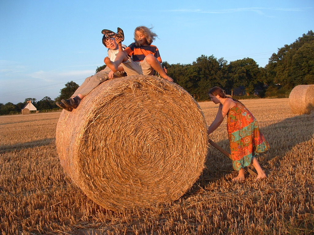 Their children seem to agree with The FourteenYearOld that during the summer, there is nothing, absolutely nothing, better than messing about on a hay bale!