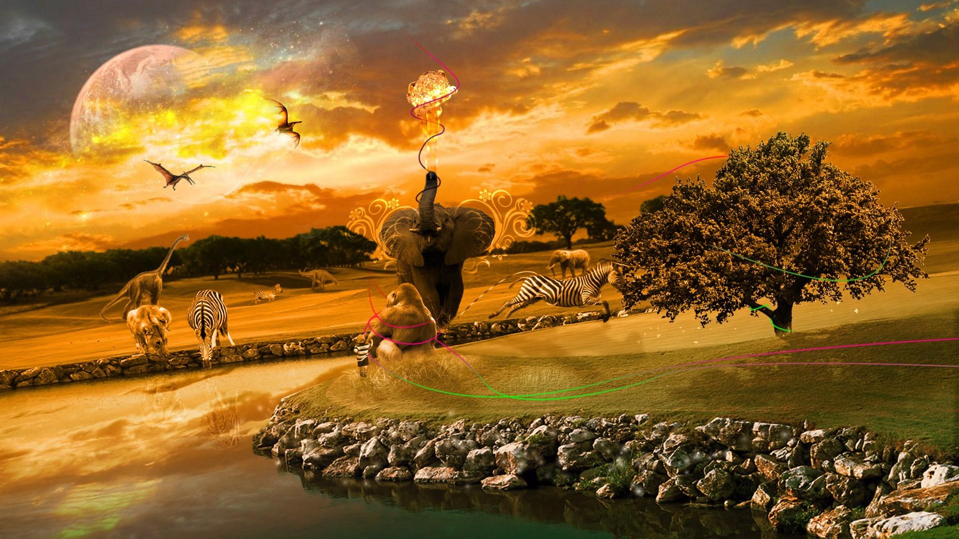 HD Africa Wallpaper