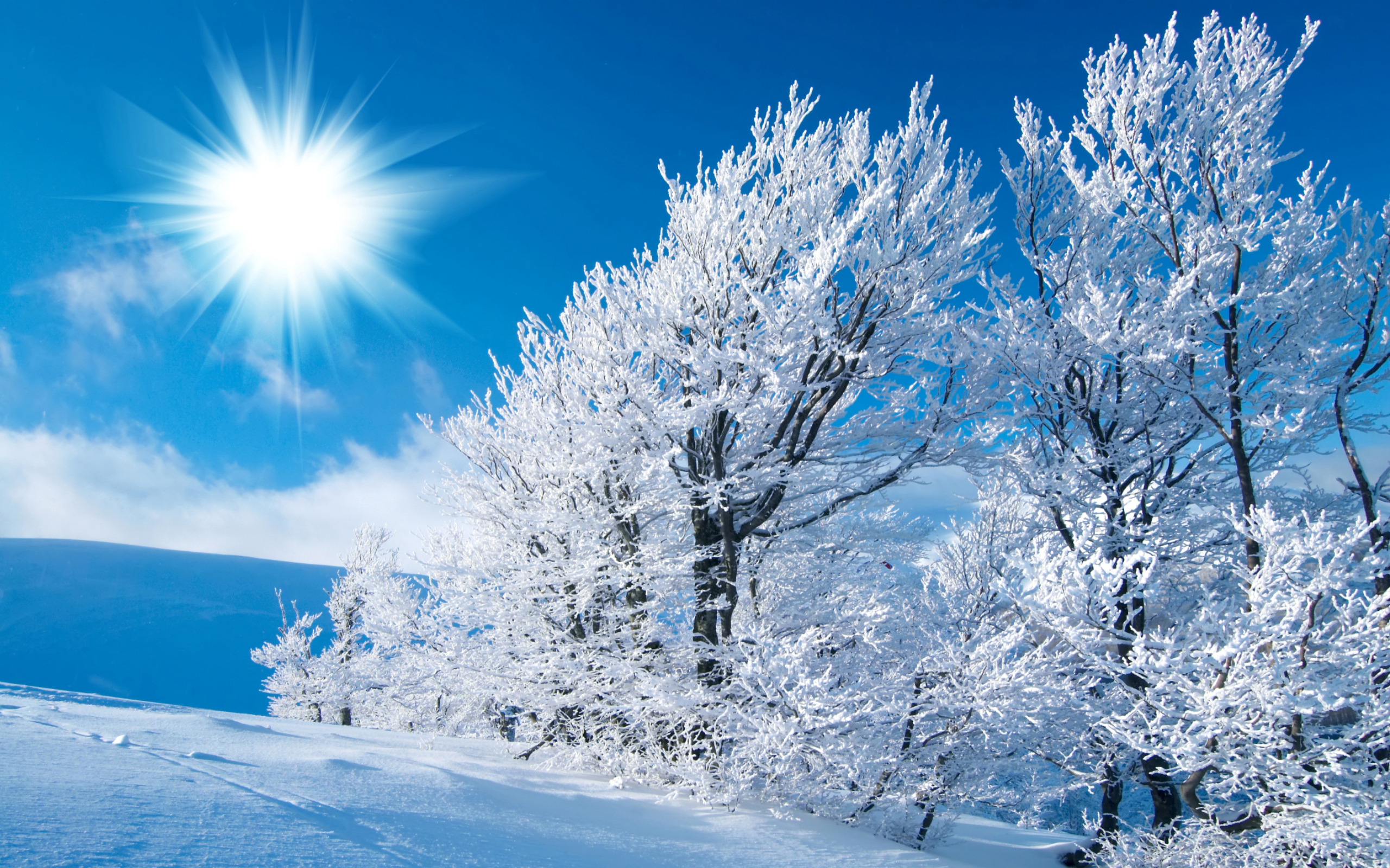 Winter Snow Wallpaper HD 2