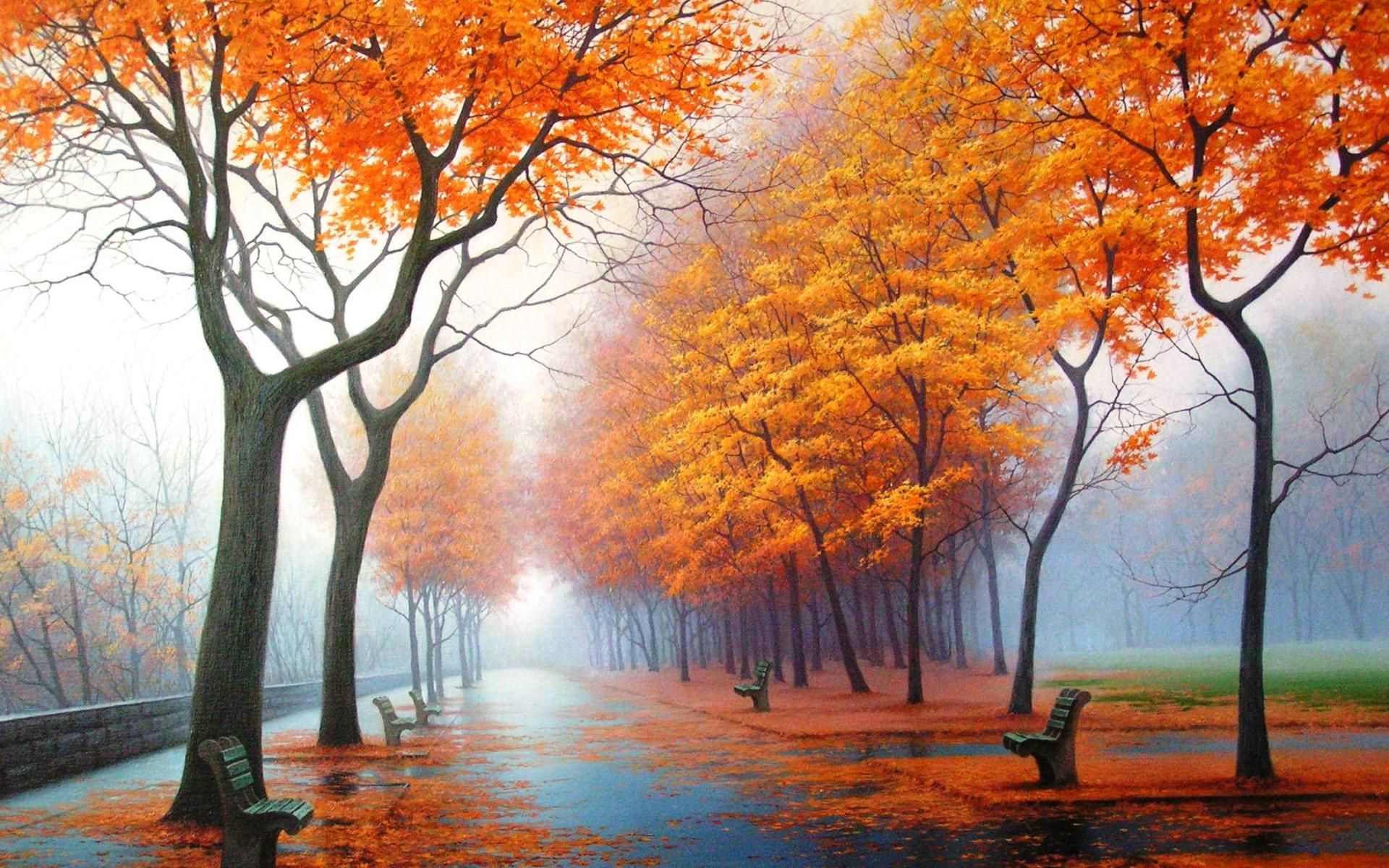Autumn In The Park Hdr wallpaper