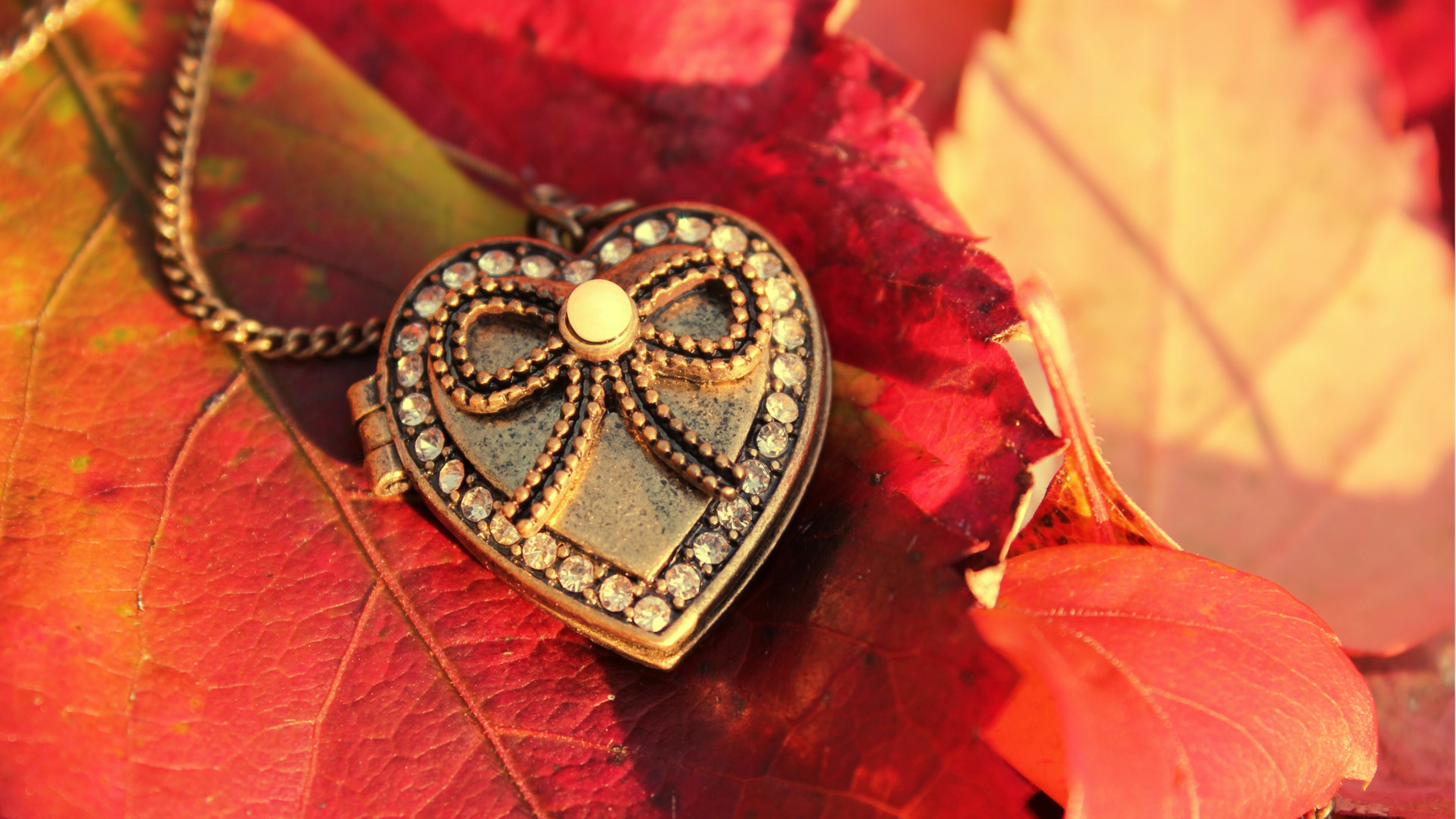 3840x2160 Wallpaper heart, pendant, leaves