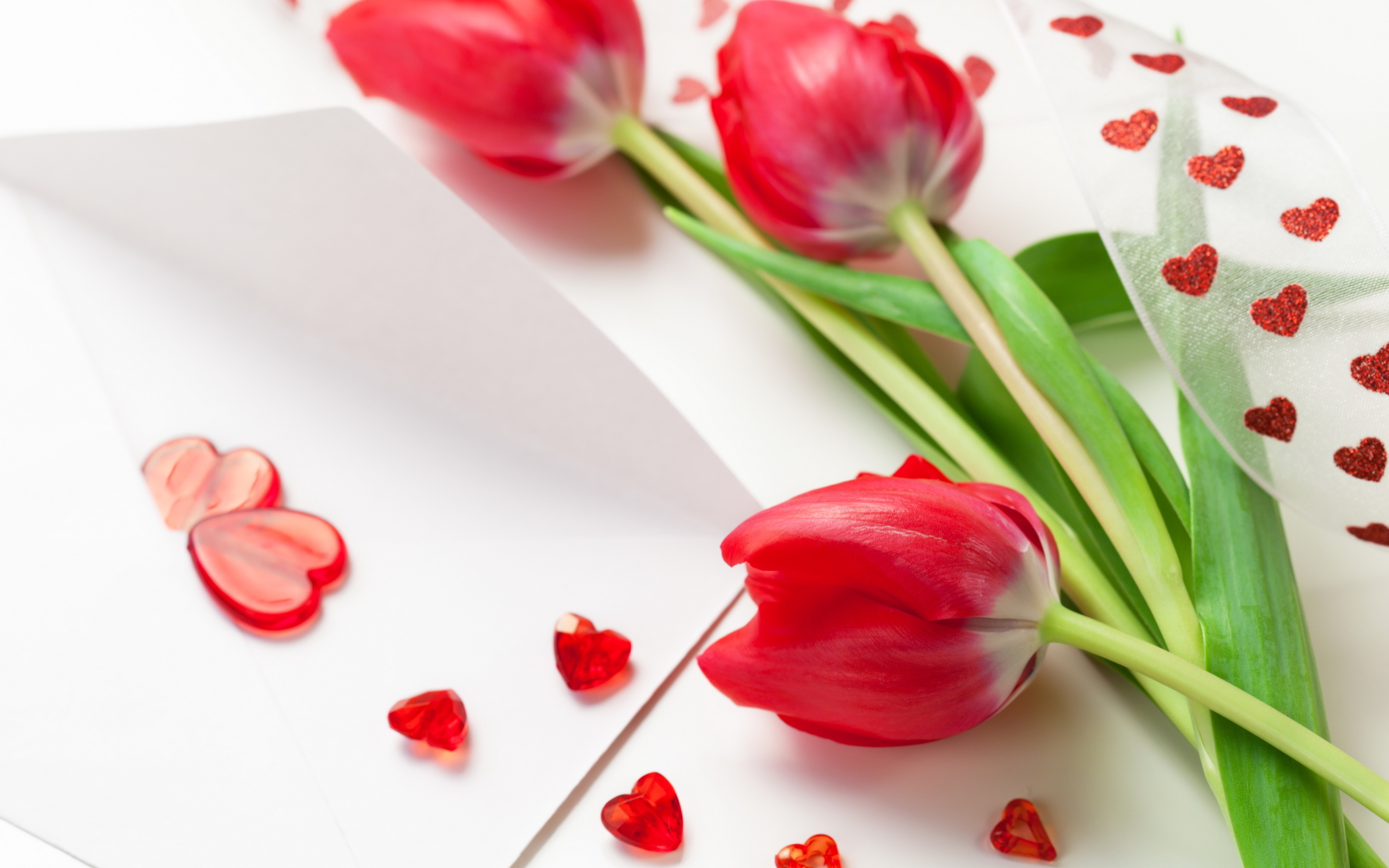 Hearts red tulips